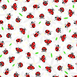 Seamless background with daisies and ladybugs Stock Photo