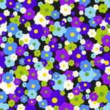 Seamless Background With Daisies Royalty Free Stock Image