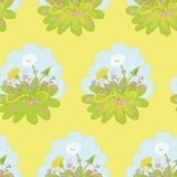 Seamless background, dandelions flowers Royalty Free Stock Photo