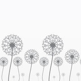 Seamless background with dandelions Stock Photography