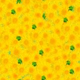 Seamless background of dandelions stock image