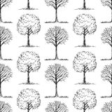 Pattern of the deciduous trees sketches Stock Photography
