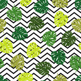 Seamless background with decorative leaves. Summer tropical design. royalty free illustration