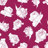 Seamless background with deep pink roses backdrop. royalty free illustration