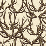 Seamless background with deer antlers Royalty Free Stock Photo