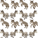 Seamless background design with gray donkeys Stock Images