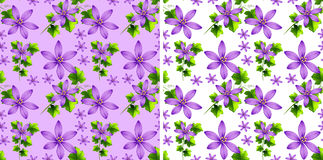 Seamless background design with purple flowers Stock Photos