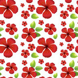 Seamless background design with red hibicus flowers Stock Photography