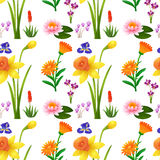 Seamless background design with wild flowers Stock Photos