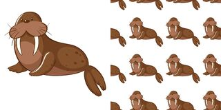 Free Seamless Background Design With Cute Sea Lion Stock Photo - 169486610