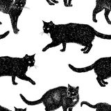 Pattern of drawn black cats. Seamless background of the domestic black cats Royalty Free Stock Photos