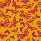 Seamless background with doodle butterfly. Royalty Free Stock Images