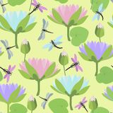 Seamless background with dragonflies and lotus flowers. Vector illustration. Variegated seamless pattern with dragonflies and lotus flowers isolated on Stock Image
