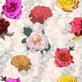 Seamless background drawing - rose flowers Royalty Free Stock Photo