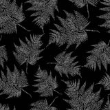 Vector pattern of a the fern leaves. Seamless background of the drawn fern leaves Royalty Free Stock Images