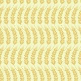 Seamless background of ears of grain Stock Image