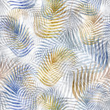 Seamless background with fern. Leaf pattern Royalty Free Stock Photography