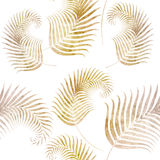 Seamless background with fern. Leaf pattern Royalty Free Stock Photo