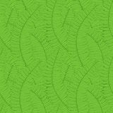 Seamless background with fern leaves Royalty Free Stock Photography