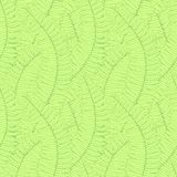 Seamless background with fern leaves Royalty Free Stock Images