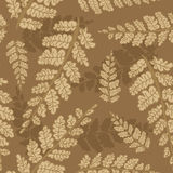 Seamless  background of fern leaves. Royalty Free Stock Images