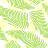 Seamless background with ferns. Green background Stock Illustration