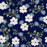 Seamless background Floral pattern Stock Photos
