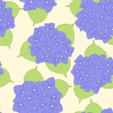 Seamless background with  flower hydrangea . Royalty Free Stock Images