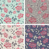 Seamless Background with flower Pattern Royalty Free Stock Photography