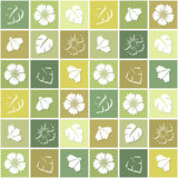 Seamless background with flowers in colored squares. Stock Image