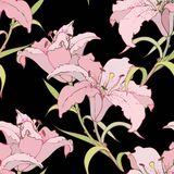 Seamless background from a flowers ornament, fashi Stock Image