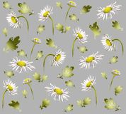 Seamless background from a flowers ornament, fashi Stock Images