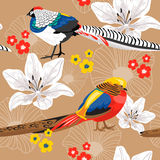 Seamless background with flowers and pheasants Stock Images