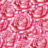 Seamless background, flowers rose Royalty Free Stock Photography