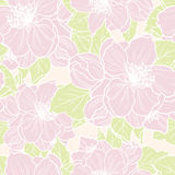 Seamless background with flowers. Vector seamless floral background. Pattern with cherry blossom Stock Photo