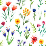 Seamless background with flowers Royalty Free Stock Photo