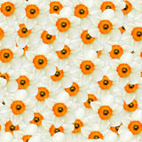 Seamless background of flowers white narcissus Stock Photo