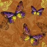 Seamless background with flying butterflies. Vector illustration Royalty Free Stock Photos