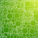 Seamless background foam bubbles, white on green Royalty Free Stock Images