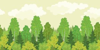 Seamless background, forest Royalty Free Stock Photography