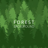 Seamless background, forest with trees silhouettes. Vector illustration vector illustration