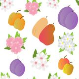Seamless-background-with-fruits-and-flowers royalty free illustration