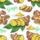 Seamless background of ginger Royalty Free Stock Images