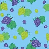 seamless background with grape Stock Photography