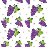 Seamless background with grapes Stock Image