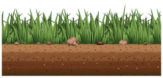 Seamless background with grass on the ground. Illustration Royalty Free Stock Photos