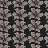 Seamless background with gray lilies.floral background Royalty Free Stock Images