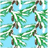 Seamless background of green fir branches in white snow with brown cones on blue, clip art. Stock vector illustration Stock Photo