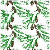Seamless background of green fir branches in white snow with brown cones on white,. Clip art stock vector illustration Royalty Free Stock Photography