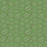Seamless Background Green Leaves. Green leaves with contour foliage background. Seamless tile Stock Images